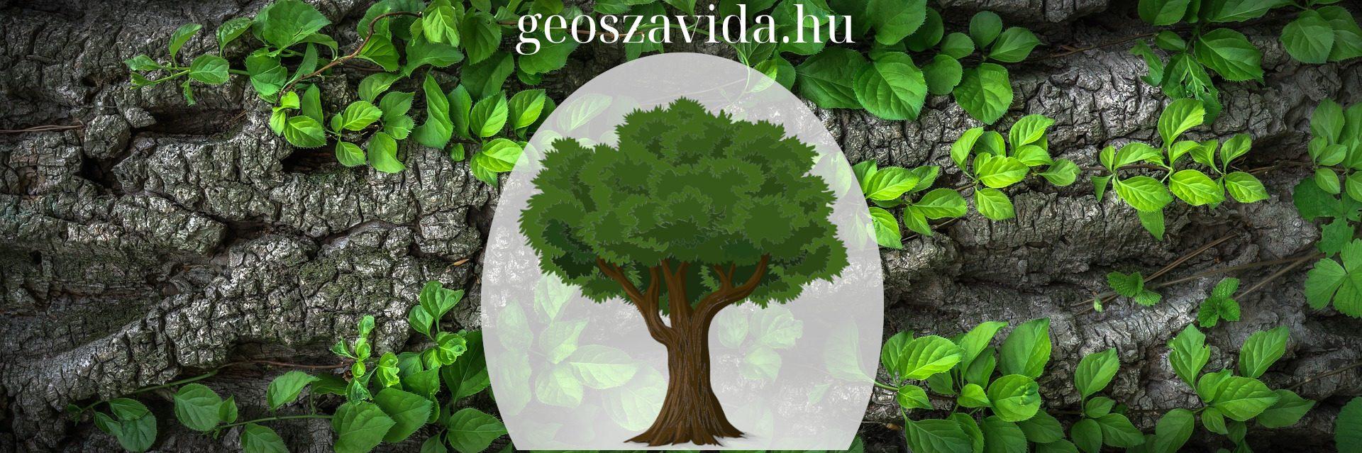 GeoSzaViDa – Környezetvédelmi Szolgáltató Kft.